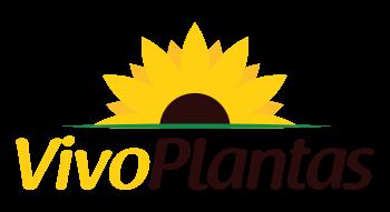 Vivo Plantas